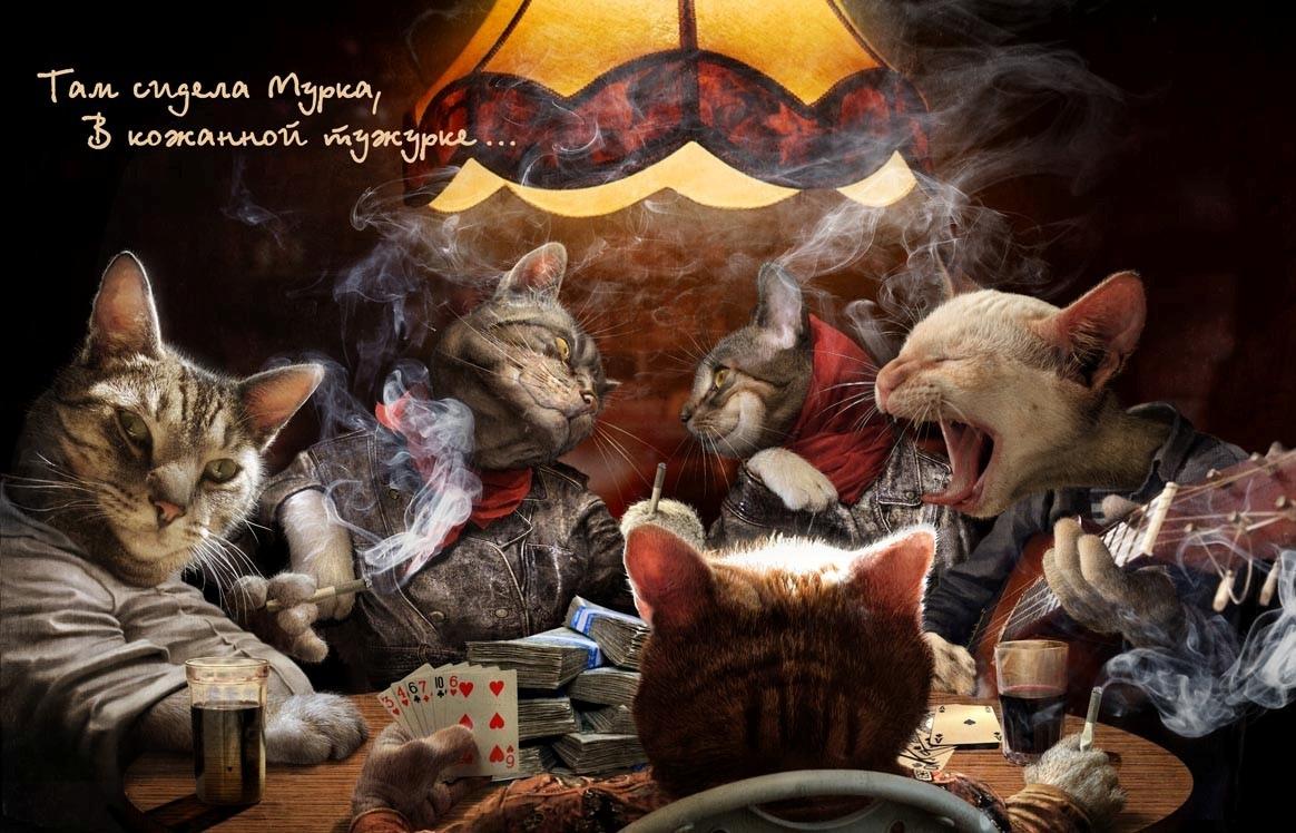 Базы игроков казино москвы